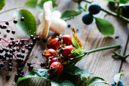 Detox – probiotický komplex